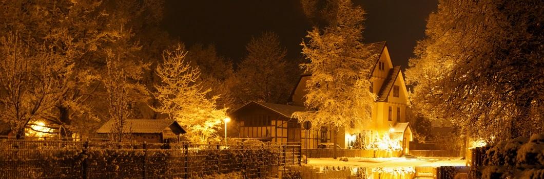 Slideshow_winter2
